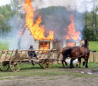 Spalenie Wąwolnicys